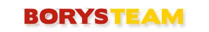 Borys Team - pomoc drogowa i serwis samochodowy