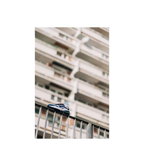 Puma, fot. Mateusz Szeliga