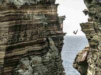 Red Bull Cliff Diving 2016 - K. Kolanus