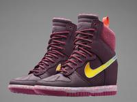 Nike Dunk Sky Hi Sneakersboot