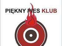 Klub Piękny Pies - Kraków
