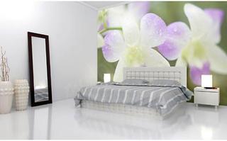 Szukasz efektownej ozdoby wnętrza? Fototapety z orchideą sprawdzą się w tej roli znakomicie!